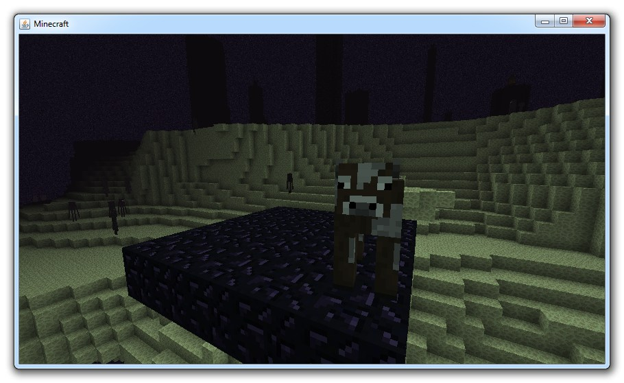 how to meet the nether dragon in minecraft